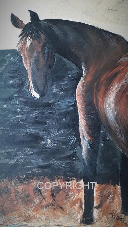 Pferdeporträt: Pferd steht im Stall