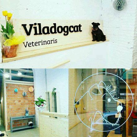veterinario cumpleaños