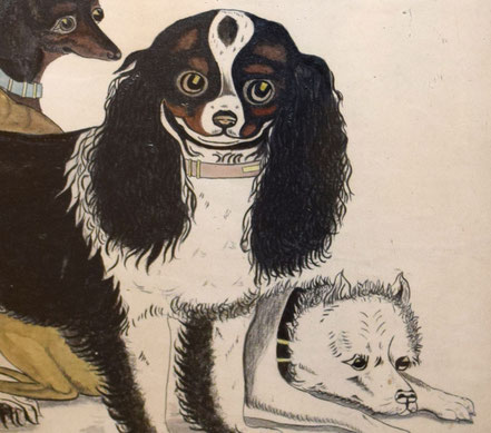 Large Naive Watercolour of a Variety of Dogs 19th century