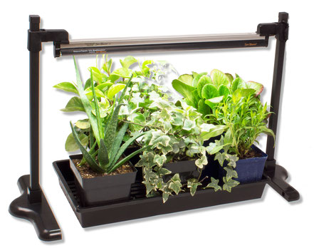 """Strip Light Stand ~ Shown with our 18"""" T5HO  combo,  1020 Quad Thick propagation tray and some house plants that are loving the light and growing happily!"""