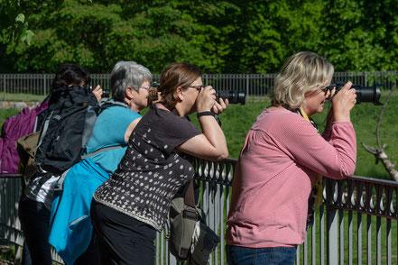 Fotogruppe, Schlosspark Putbus