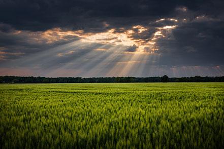 Landschaft mit Sonnenstrahlen nach Regen