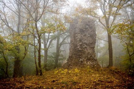 Fotoworkshop Harz, Stecklenberger Forst, Lauenburg Ruine, Harz
