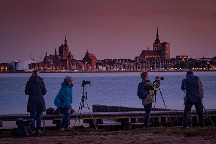 Gruppe, Hafen Altefähr, Insel Rügen