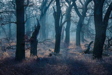 Landschaftsfotograf in Deutschland, Sebastian Kaps
