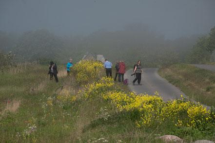 Fotogruppe im Nebel
