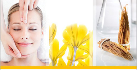 Day Spa Ästhetika Beauty Concepts Trier