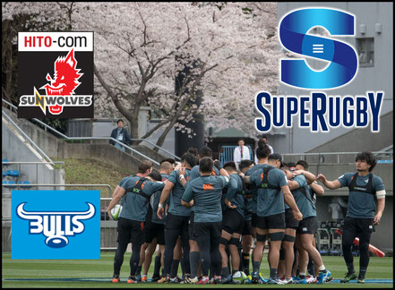 Sunwolves -v- Bulls Preview