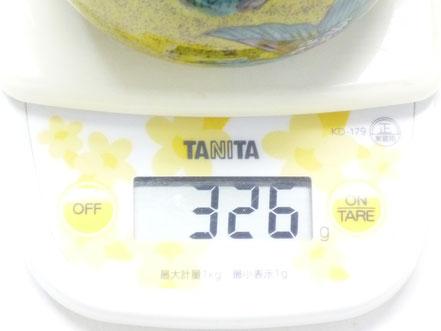 百華園-九谷焼急須・ティーポット 大 山茶花 朱【裏絵】