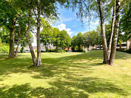 Die schön gestaltete Parkanlage Wecholder Straße hat einen größeren Hügel, der der Landschaft Dynamik verleiht (Foto: 05-2020, Jens Schmidt)