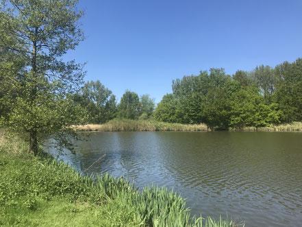 Blick auf den Krimpelsee in Bremen-Habenhausen