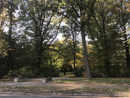 Blick in den Wolfskuhlenpark von der Kattenturmer Heerstraße