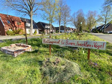 Frühling 2020: die Natur erwacht auf der Rettungsinsel für Bienen, Insekten und Vögel in Bremen-Kattenturm, Bremen Obervieland (Foto: 04-2020, Jens Schmidt)