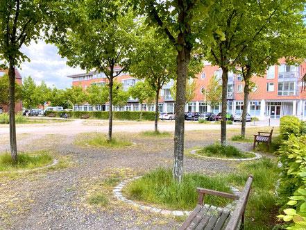 """Kunst im öffentlichen Raum: Die relativ ungepflegte Grünanlage ist formal """"Straßenbegleitgrün"""", weshalb eine regelmäßige Pflege budgetabhängig ist (Foto: 05-2020, Jens Schmidt)"""