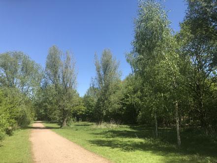 Befestigter Weg parallel zur Habenhauser Brückenstraße
