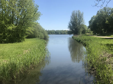 Krimpelfleet am Krimpelsee in Bremen-Habenhausen