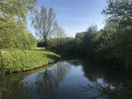 Der Außenarm des Wadeackersees mündet ins Wadeackerfleet