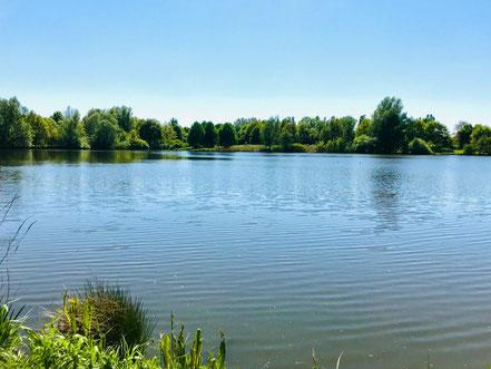 Der Krimpelsee in Bremen-Habenhausen misst fast 500 Meter im Durchmesser (Foto: 05-2018, Jens Schmidt)