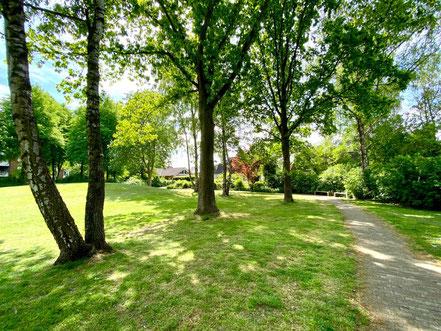 Baumgruppe der Grünanlage Wecholder Straße in Bremen-Kattenturm, Bremen Obervieland (Foto: 05-2020, Jens Schmidt)
