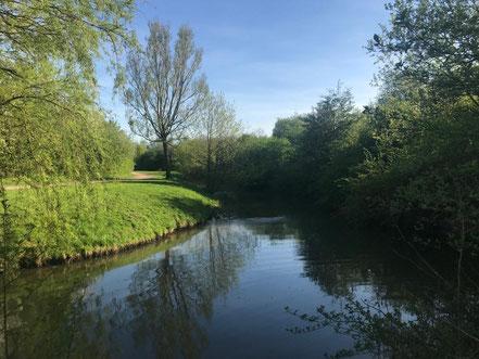 4 km lange Spezierwege an den schön angelegten Fleeten bieten ideale Voraussetzungen für einen Marsch durch die Natur in Bremen Obervieland (Foto: 04-2018, Jens Schmidt)