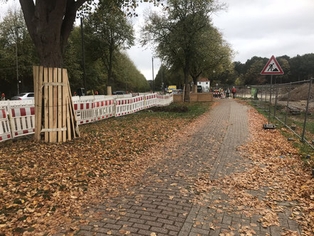 Das neue Infobüro Gartenstadt Werdersee an der Habenhauser Landstraße (Foto: 10-2018, Jens Schmidt)Schutz des Baumbestands an der Habenhauser Landstraße (Foto: 10-2018, Jens Schmidt)