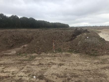 Tausende Kubimeter Sand werden für den Bau der Gartenstadt Werdersee bewegt (Foto 10/2018)