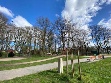 Die Erinnerungsstele und Ginkgobaum ergänzen sich an der Gedenkstätte in Huckelriede (Foto 03-2020, Jens Schmidt)