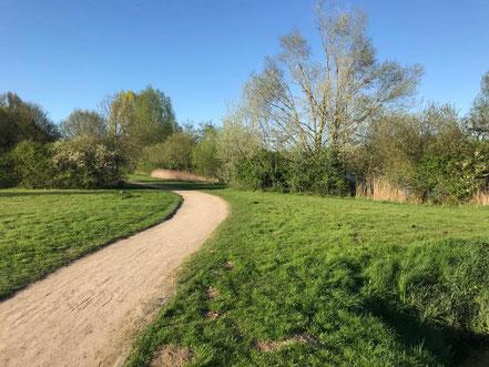 Rund um den Wadeackersee sind Wege durch die Natur angelegt, die zum Spaziergang oder zu einer Radtour einladen (Foto: 04-2018, Jens Schmidt)