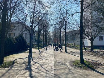 Frühling 2020 in Bremen Kattenturm: Erste Sonnenstrahlen in der Wohnanlage Alfred-Faust-Straße (Foto: Jens Schmidt 05.03.2020)