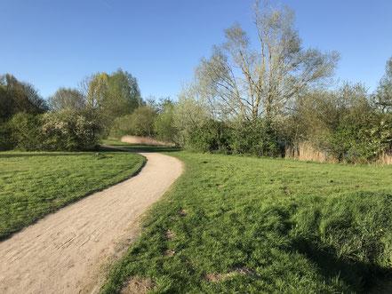 Spazierweg an der Kattenescher Seite des Wadeackersees