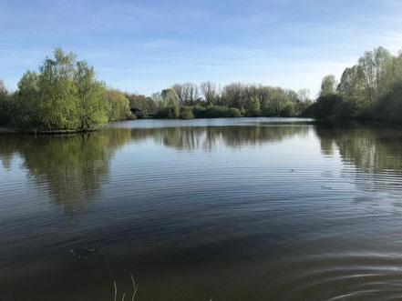 Der Wadeackersee in Bremen-Obervieland liegt auf der Grenze zwischen Kattenesch und Arsten (Foto: 04-2018, Jens Schmidt)