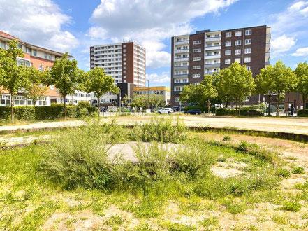 Die Lindenspirale auf dem Cato-Bontjes-van-Beek-Platz in Bremen-Kattenturm im Frühjahr 2020: Die vier Meter große Betonplatte soll den Widerstand symbolisieren (Foto: 05-2020, Jens Schmidt)