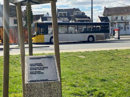Vor einem Jahr, im März 2019, wurde die Stele hier in Huckelriede enthüllt (Foto 03-2020, Jens Schmidt)