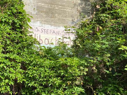 """Auf der linken Seite ist fast gar nichts mehr vom Kunstwerk """"Blütenteppich"""" am Hochbunker in Kattenturm zu erkennen (Foto: 05-2020, Jens Schmidt)"""