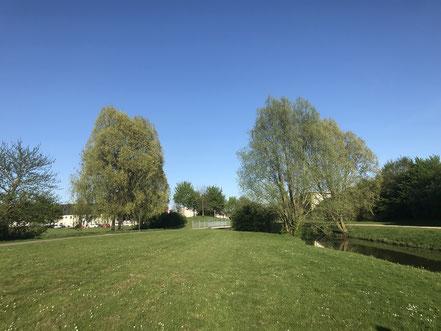 Großzügige Wiesen trennen die Wohnbebauung vom Seeufer des Wadeackersees