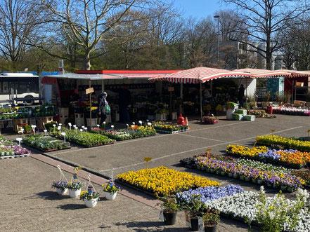Kattentorner Markt (Wochenmarkt in Bremen-Kattenturm, Bremen-Obervieland) Foto: Jens Schmidt 04-2020