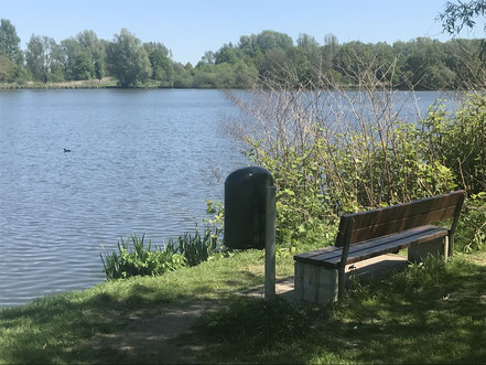 Kleine Parkbank am Krimpelsee in Bremen-Habenhausen