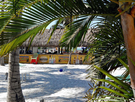 Motorradreisen, Strand, eine Baar, Palmen und Menschen