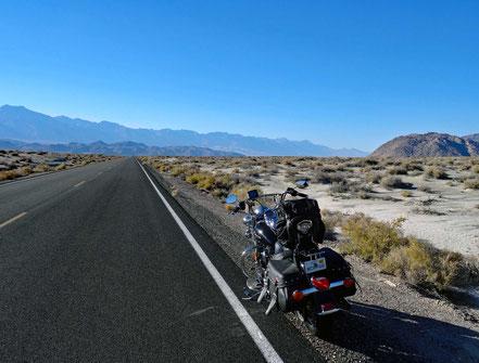 Motoglobe Motorradreisen. Die Harley steht am Strassenrand der State Road Nr. 190 und wir blicken auf eine lange gerade Strasse mitten in eine Wüstengebiet und im Hintergrund sind die Siearra Madres zu sehen.