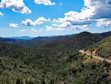 Motoglobe Motorradreisen. Die State Route Nr. 89 windet sich durch das schöne Waldgebiet des Pescott Natl. Forest, Arizona, USA.