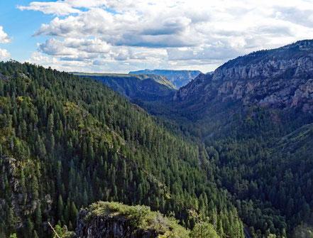 Die schöne Aussicht vom Mongollon Rim auf den Oak Creek Canyon