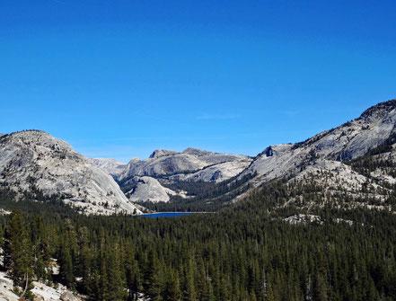 Motoglobe Motorradreisen. Wir blicken zurück auf den Lake Tenaya, die umliegenden Wälder und Berglandschaft im Yosemite National Park, Kalifornien, USA.