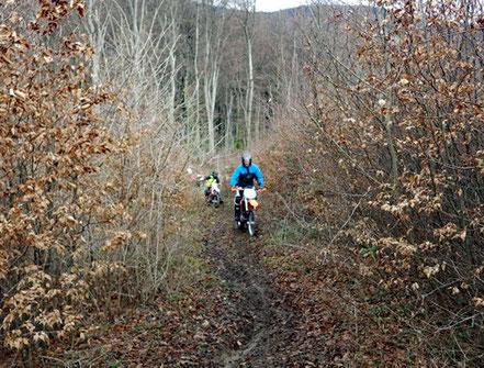 Motorradreisen. Wir fahren auf den Enduromaschinen einen nassen Waldweg hinauf, wobei wir durch Jacque Cornu angeleitet werden.