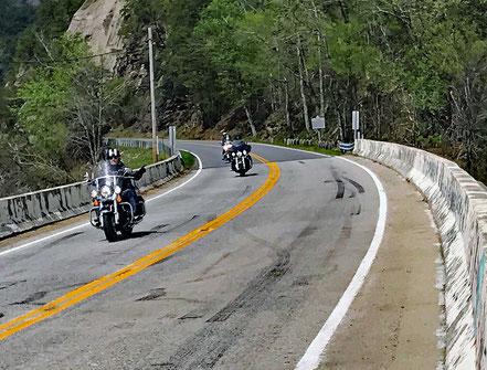 Motoglobe_Motorradreisen. Drei Motorräder fahren ein Kurse auf der US Hwy Nr. 129 und es hat links und rechts Bäume und Büsche