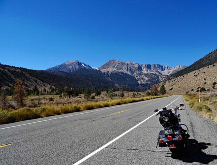 Motoglobe Motorradreisen. Die Harley steht am Strassenrand der Tioga Rd. Nr. 120 in Kalifornien und im Hintergrund sind die Sierra Nevada Berge zu senden.