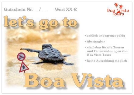 Gutschein  let's go to Boa Vista mit kleiner Schildkröte angeboten von Boa Vista Tours