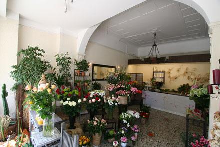 Ausstellungs- und Verkaufsraum