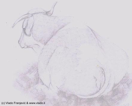 """""""Šarova"""", crtež Vlade Franjevića napravljenog u vrijeme kad je još živio na selu s bakom mu i djedom u Martincu kraj Čazme"""