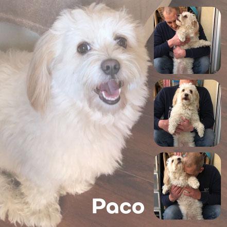 PACO adopté en Mai 2019