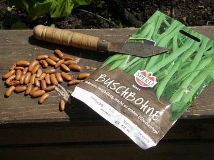 Hochbeet Praxistipps Im Juni Ich Bin Im Gartende